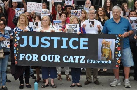 justice-4-our-catz-2